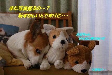 IMG_3846_4.JPG