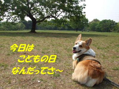 DSCF3921_2.JPG