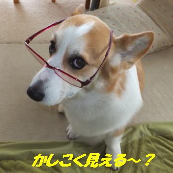 DSCF6633_1_2.jpg