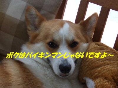DSCF6991_2.JPG