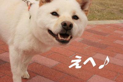 IMG_7244_2.JPG